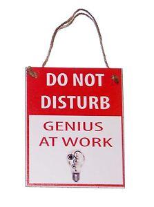 Do-Not-Disturb-Genius-at-Work-with-Lightbulb-Novelty-Funny-4x5-Wood-Door-Hanger