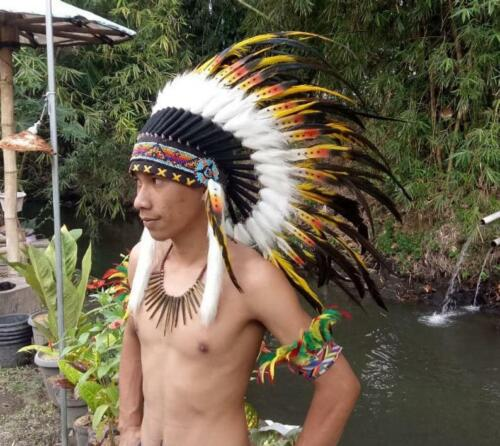 Details about  /Custome Headdress Warbonnet Headband Hat Turkey Yellow black Feather Indian