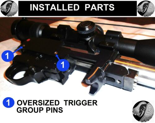 Ruger 10//22 Upgrade Kit +more FREE S+H Stainless or TITANIUM screw Bolt Buffer