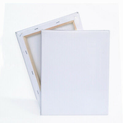 Blank Artist Canvas Art Board Plain Painting Stretched Framed White Large Small Ebay