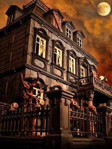 Image Is Loading Playmobil Haunted Halloween Victorian Gothic Mansion 5300 Custom