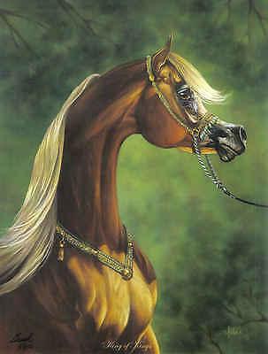 ART PRINT POSTER PAINTINGS SULTAN STEED HORSE ARABIAN NOFL0967