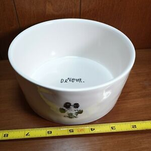 RAE-DUNN-Devour-Pet-Cat-Dog-Bowl-Artisan-Collection-Ceramic-Pet-Dish-6-034-w-Magenta