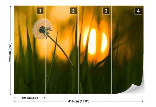 Tapete 1X-24752 Löwenzahn Blume Saat Gras Makro Vlies Fototapete