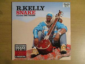 Details about R   KELLY FT BIG TIGGER - SNAKE Vinyl 12
