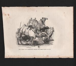 OPC-Vintage-Holy-Land-Engraving-Camels-Waiting-Loads-at-Suez-8x6-034