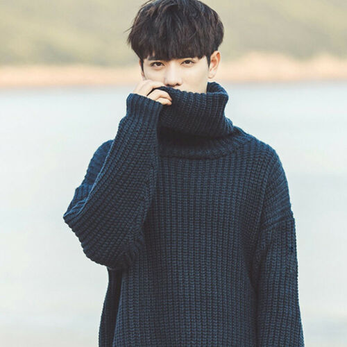 Mens Turtleneck Knitted Pullover Sweaters Winter Tops Sweatshirt Blouse Jumper
