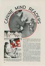1936 Magazine Article Train Your Dog to do Magic Tricks with Cards Training