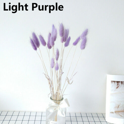 20pcs naturel fleurs séchées Fleurs Artificielles Coloré Faux Lapin Queue Herbe