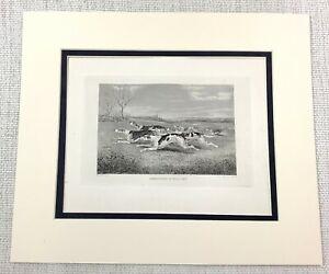 1843 Antico Stampa Fox Caccia Beagle Segugi Cani Full Cry Vittoriano Incisione