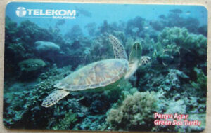 Malaysia-Used-Phone-Card-Sea-Turtle