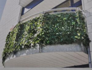 Das Bild Wird Geladen Garden Feelings Sichtschutz Hecke 034 Efeu Windschutz