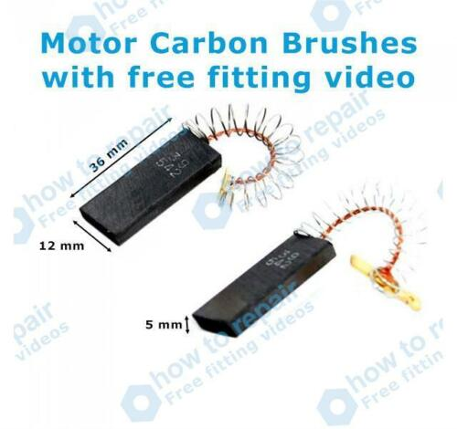 Bosch MOTEUR BALAIS DE CHARBON WFL2064EE//16 WFL2066GB//01 WFL2066GB//06 WFL2066GB//08