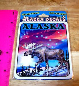 Alaska-sticker-Decal-Moose-amp-big-Dipper-in-Beautiful-Sunset-night-sky