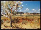 Port Hedland WA Sunlight upon the colours of landscape c1970's Postcard (P239)