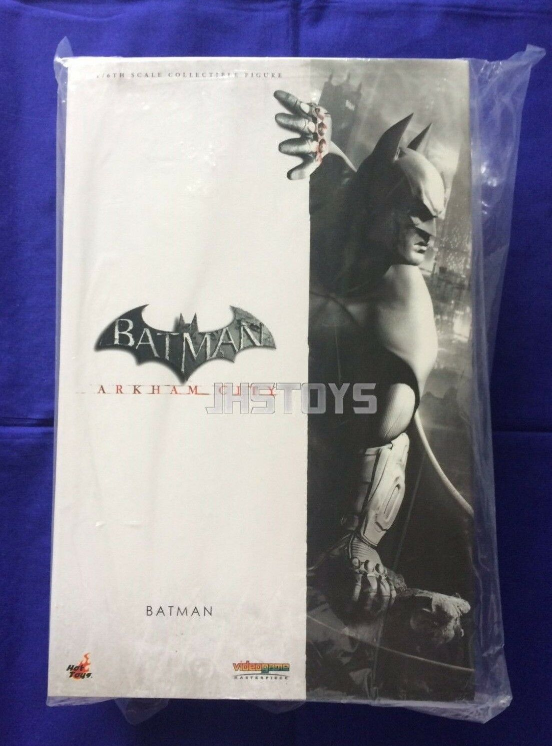 Hot Toys 1/6 Batman Arkham City VGM18