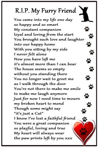 Cat Bereavement Magnet  'RIP My Furry Friend'  Cat Loss, Sympathy, Memorial,