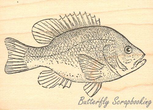 FISH Sun Fish Wood Mounted Rubber Stamp JUDIKINS 3626F New