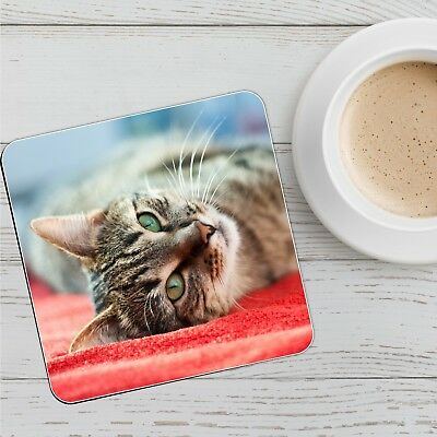 Tabby Cat Personalised Drinks Mat Coaster