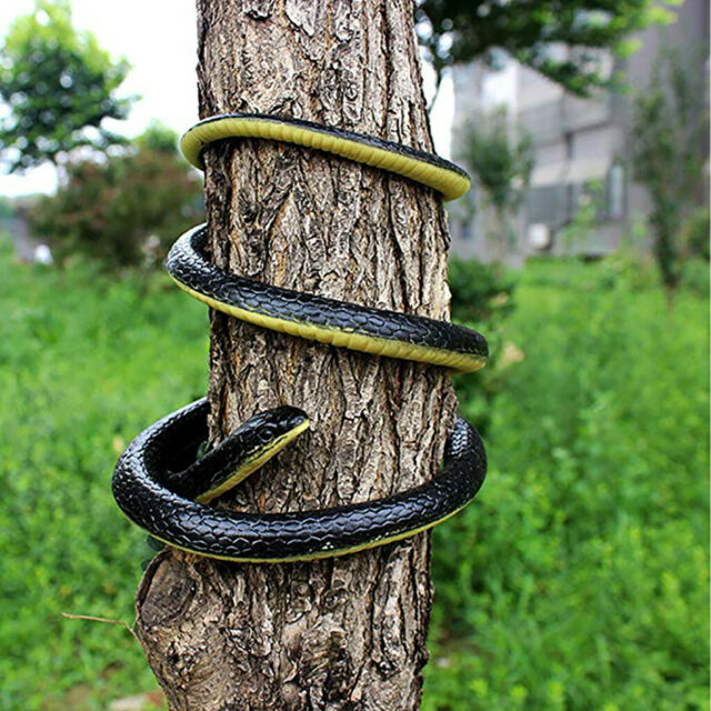 Rubber Fake Snakes Scare or Keep Birds Away