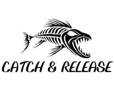 keep it reel decal fly fishing car boat truck window bumper sticker perfect gift