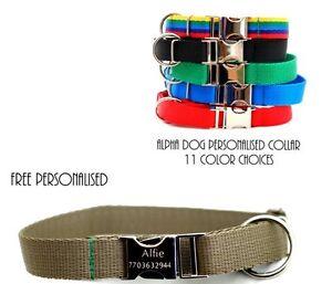 METAL-GRABADO-Hebilla-Perro-Collar-Personalizado
