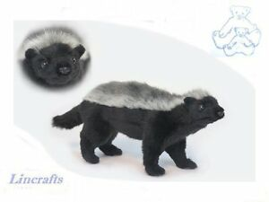 Details about Ratel, Honey Badger, Plush Soft Toy by Hansa  Sold by  Lincrafts  6218