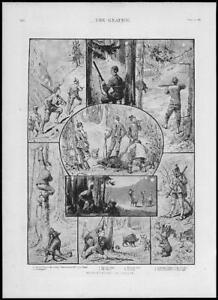 1887-Antique-Print-BAHAMAS-Nassau-Boar-Hunting-Roebuck-197