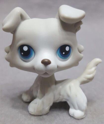 RARE Littlest Pet Shop Collie Dog Puppy Figure #363 Light Grey Blue Eyes LPS Toy