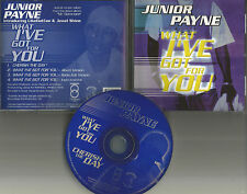 JUNIOR PAYNE What I've got for you / Cherish Day EDIT & INSTRUMENTAL CD single