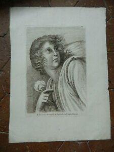 Stampa Ritratto Pl. VII Incisione Acquaforte Paolo Fidanza Raphael Vaticano 18th