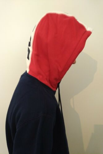 799411dabcd0 NEW! PALACE FLAGIN Hoodie