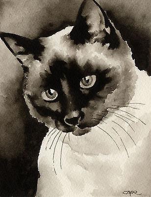 Siamese Cat Art Print Sepia Watercolor 11 x 14 by Artist DJR