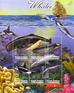 Caribbean-Whales-tueur-Sperme-a-bosse-Pygmee-SEI-Timbre-Feuille-2002-Grenade