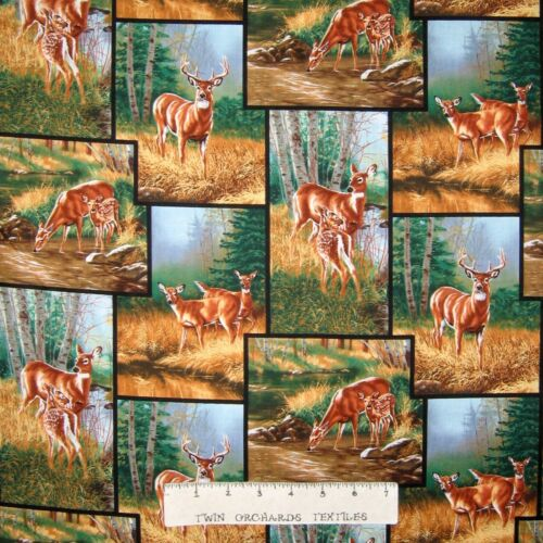 Wild Wings Fabric Springs YARD Whitetail Deer Nature Patch CP24550