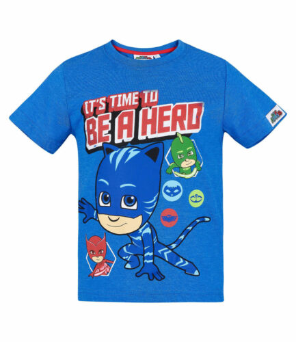 Boys Kids Official Various Character Short Sleeve T Tee Shirt Top 3-12 Years