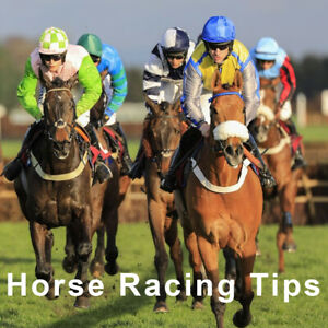 Racing Betting Tips