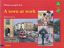 Oxford Reading Tree: Stages 1-11: Fact Finders: Unit E: Where People Live: A Tow