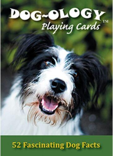 DOG-ology Set di 52 carte da gioco + Buffoni (STS)