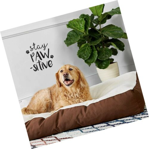 """Cute Trendy Dogs Lover Pe... 12/"""" x 10/"""" Details about  /Vinyl Wall Art Decal Stay Pawsitive"""