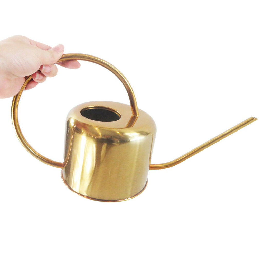 Stainless Steel Golden Watering Can for Succulent Plants Modern Style 900ML