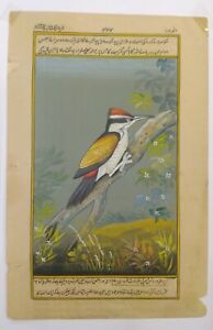 Hand-Painted-Sparrow-Fine-Bird-Miniature-Painting-India-Artwork-Paper-Nature-art