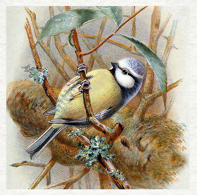Vintage Painting Now Fabric Fabric Cushion Craft Quilting Panel Brambling