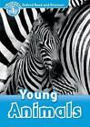 Oxford Read and Discover 1: Young Animals von Rachel Blason (2012, Taschenbuch)