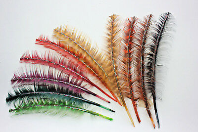 NOS Vintage millinery hat turkey feather quill trims XXX2 natural early 1900s