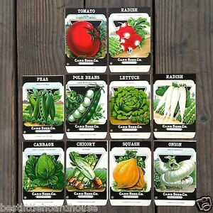 Vintage-Original-10-VEGETABLE-SEED-PACKS-NY-Card-Seed-Company-SET-G-1920-039-s-NOS