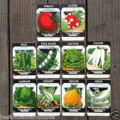 30 Original Card Seed Co Packets VEGETABLE SEED PACK COLLECTION Unfilled 1920s