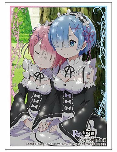 Re:Zero Starting Life in Another World Rem /& Ram Character Sleeve HG V.1143
