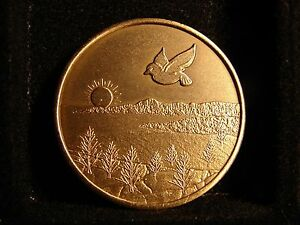 Alcoholics Narcotics Anonymous AA-NA Bronze Medallion - GIVEN WINGS wbx15
