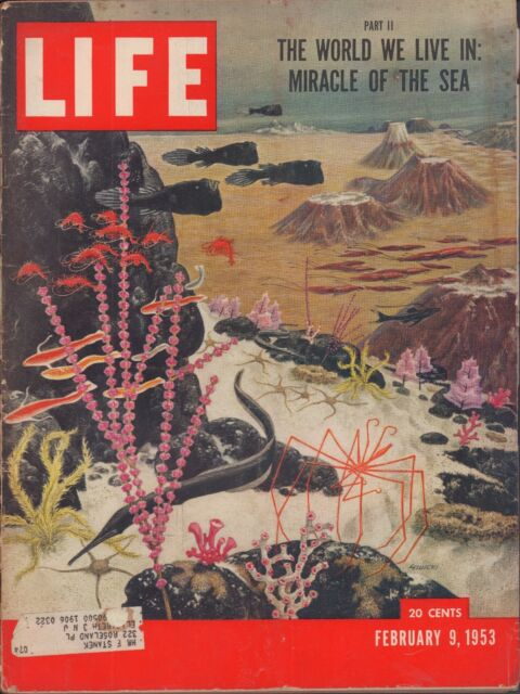 LIFE February 9,1953 Miracle of the Sea / Jerusalem / Harbor Fireman Lose a Line